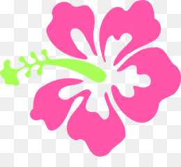 pink hibiscus flower clipart Pink flowers Borders and Frames Clip art