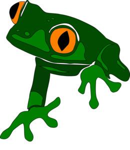 amphibians clipart Frog Vertebrate Salamander