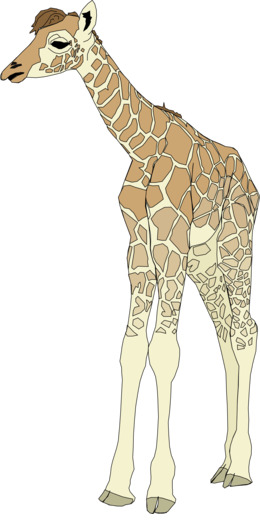 Deer clipart - About 3600 free commercial & noncommercial clipart ...