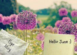 Download Goodbye May Hello June Clipart Desktop Wallpaper