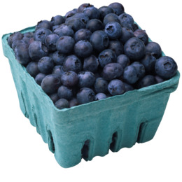 box of blueberries clipart Blueberry pie Organic food