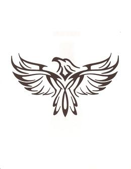 Download cartoon image eagles clipart Cartoon Bald eagle