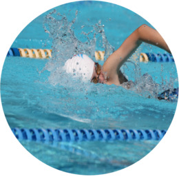 Swimming Sport Computer Icons Scuba diving - Swimming png ...