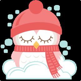 可爱的冬天猫头鹰剪辑猫头鹰剪辑艺术