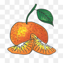 Mandarin Chinese clipart Orange Pumpkin Clip art