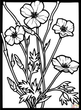 Download poppy flower black and white clipart poppy clip art mightylinksfo