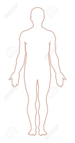 Male Body Clipart