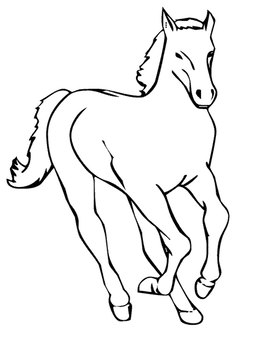 download horses coloring pages clipart mustang gypsy horse pony