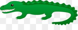 鳄鱼剪辑艺术