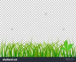 Grass Transparent Background Intended Thank You For Downloading Spring Grass Transparent Background Clipart Desktop Download