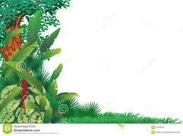 download tropical powerpoint border clipart tropical rainforest clip art