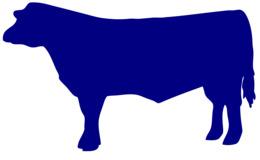 大纲的牛肉牛剪纸艺术安格斯牛肉牛剪辑的艺术