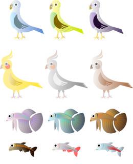 鸟和鱼剪辑鸟猫头鹰剪辑艺术