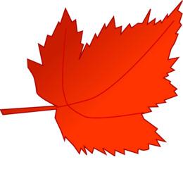 红色秋叶剪辑艺术秋叶彩色剪辑艺术