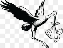stork  black and white clipart White stork Clip art
