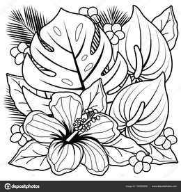 Download Tropical Flower Coloring Pages Clipart Flowers Book Beautiful Pictures From The Garden Of Nature Colouring