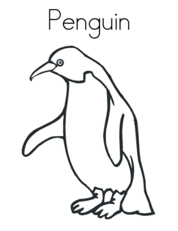 King Penguin Coloring Clipart