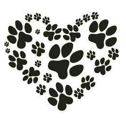 download puppy paws png clipart puppy yorkshire terrier cat