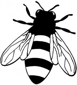 download outline image of honey bee clipart european dark bee honey bee