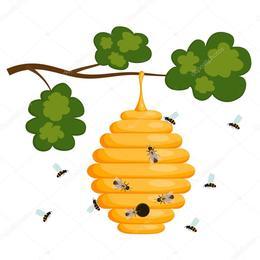 Download Beehive Vector Clipart Western Honey Bee