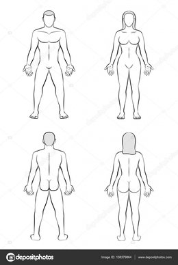 Download Female Body Front And Back Template Clipart Human Shape Drawing