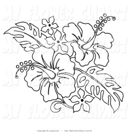 Download Hibiscus Coloring Page Clipart Colouring Pages Coloring - Hibiscus-coloring-pages