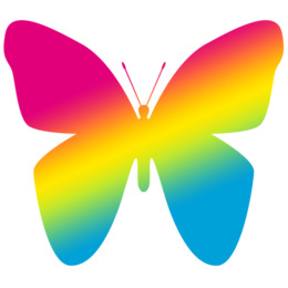 Butterfly Drawing Illustration Transparent Png Image Clipart