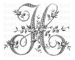 letter font design line flower art graphics pattern drawing illustration png clipart free download