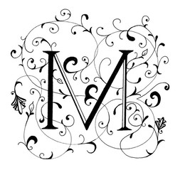download fancy letter m designs clipart letter