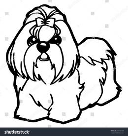 download pet center clipart shih tzu lhasa apso puppy puppy pet