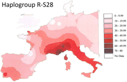 Download haplogroup t2b clipart Human mitochondrial DNA