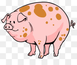 pig pattern nose peach png clipart free download